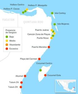 Where is Puerto Morelos